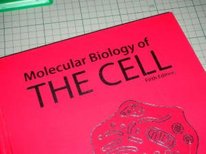 Dscn6328_cell