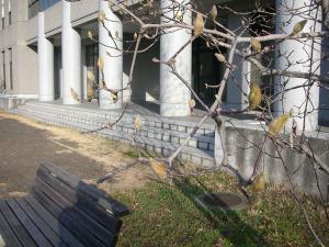20090206_dscn6451