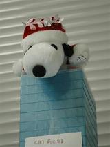 Snoopy_2010