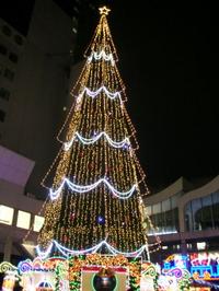Dscn858501xmas2011_1
