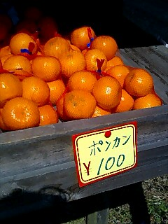 四国お遍路クエスト:無人販売【2】