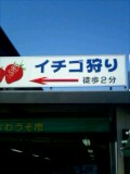 四国お遍路クエスト:須崎