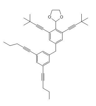 Nanoputian_2